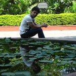 enterance lotus pond