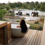 Londolozi Private Granite Suites Outdoor Bathtub