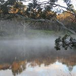  Morning mist at Wentworth Falls Lake