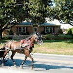 Amish Guest House and Cottageの写真