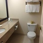 Photo de Comfort Inn Six Flags St. Louis