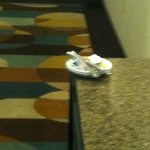  Plate left out in front of Elevators for 12 hours..