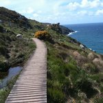  Coastal walk to Zennor
