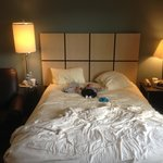 Foto Candlewood Suites Philadelphia - Mt. Laurel