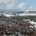  Up on the moor