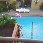 pool from my room