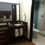 Sink & Shower Area