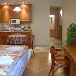 1-room studio with equipped kitchenette (micro, hot plate, refrigerator)