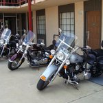my bike and the wife bike she has the harley