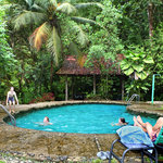  Chlorine-free natural swimming pool