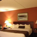 Foto AmericInn Hotel & Suites Mounds View