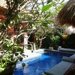 Pool und Garten