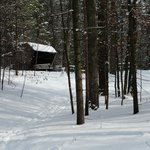 Wasaga Nordic Ski - covered shelter on the trails