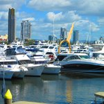 Marina Mirage  |  16/74 Seaworld Drive, Main Beach, Queensland 4217, Australia