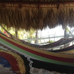 Tiki Hut Hammock Area