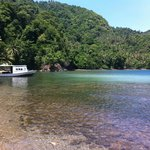  Lembeh island