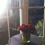  A beautiful sunny morning - from the corner of the dinning room -2