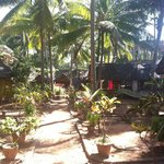 Photo de Bamboo Village