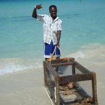 RJ and his lobster trap