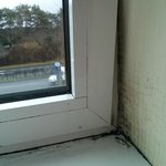 Mould around the bedroom window, and a VERY busy dual carriageway