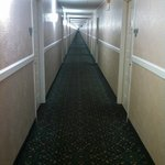  Longest hallways ever.  Reminded me of The Shining