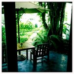  Our private walkway from our suite to the pool...