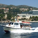 Adriana Cavtat Boat Shipping & Travel Agency