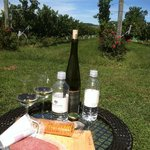 Picnic at Philip Carter Winery