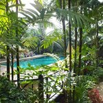 Φωτογραφία: Khao Lak Palm Beach Resort