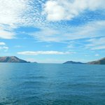  Pelorus Sound, not far from Blenheim