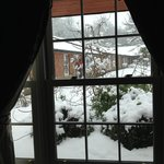  view from front room window