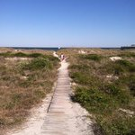  walk over the dunes to the beach