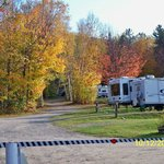 White Birches Camping Park의 사진