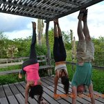 handstands on the veranda