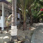  bungalow&#39;s, trail to lobby
