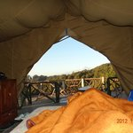 View from Inside the tent No 1