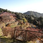  Binsar Retreat - one of the many views