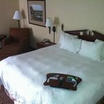Foto de Hampton Inn Quincy