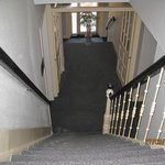  New carpet and paint in the hall and stairways