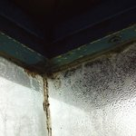  Moldy glass window