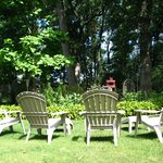  View chairs in the backyard