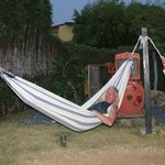 Hammocks out back