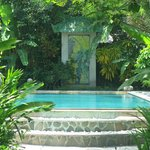 "Pool in the ""secret garden"""