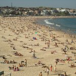 Bondi Beach on a beautiful day