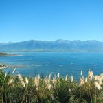 Looking back toward Kaikoura