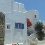 Picture perfect white houses on the walk into Naoussa