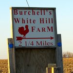 Foto de Burchell's White Hill Farmhouse Inn