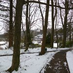 Linthwaite in the Snow