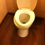 Millions in renovation, toilet seats too small!