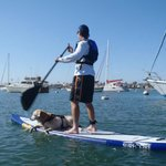 Balboa Village Paddle Boarding